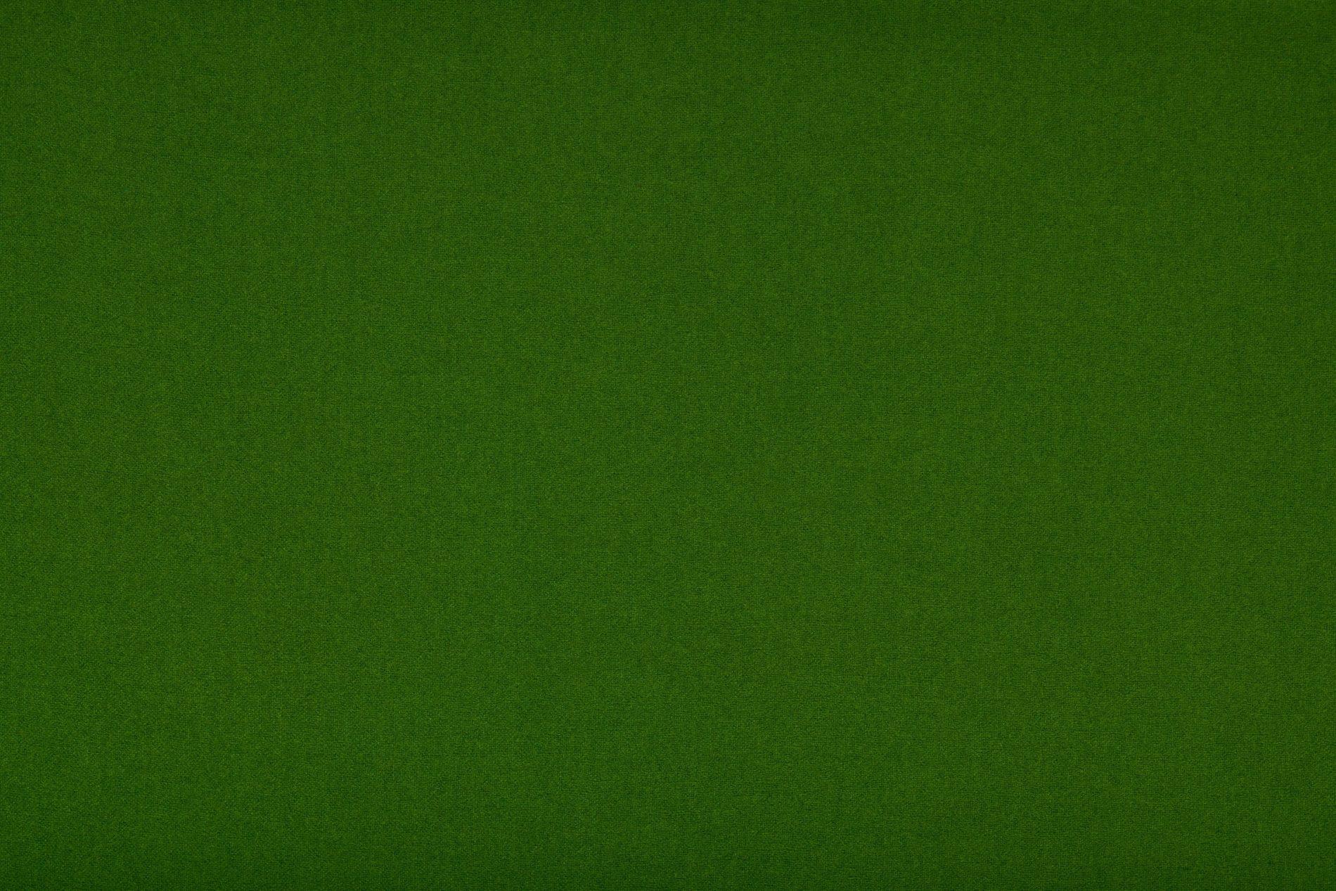 PURE 360 Plain Merino wool (19/9100)